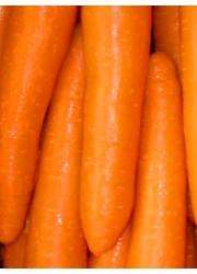 Морковь Нииох 336