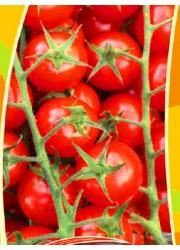 Томат Черри Красный жасмин