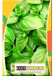 Базилик Генова зеленый