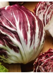 Салат цикорный Пала Росса 1 гр