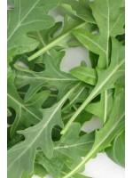 Рукола Грация -  100 000 шт семян