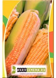 Кукуруза Сахарная Хуторянка