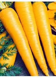 Морковь Карамель желтая 150 шт