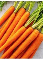 Морковь Нежность 2 гр