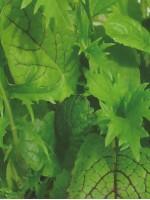 Японская зелень смесь 0.2 гр