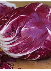 Цикорий салатный Пала Росса 1 гр
