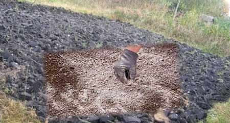 Известкование почвы под картофель