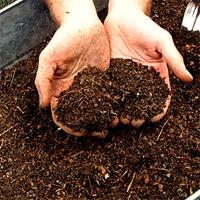 Компоненты для приготовления компоста