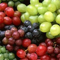 Столовые сорта винограда